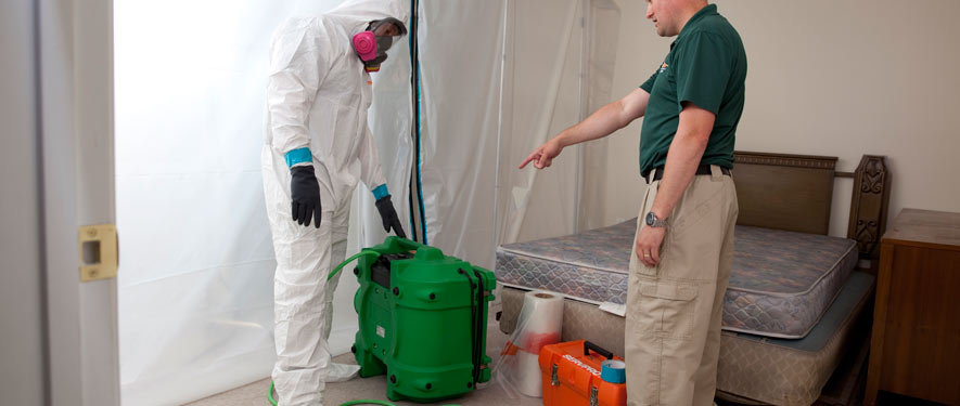 Madison, WI mold removal process